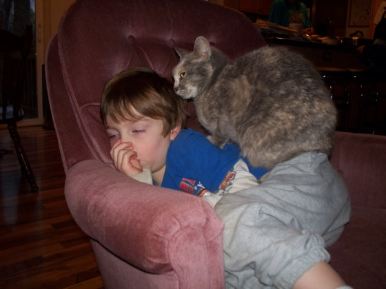 Okay, maybe when a is still enough that a cat comes to collect his body heat, he's sick.
