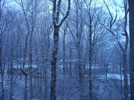 snowy snow 002