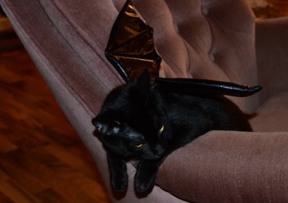 Okay, so maybe they won't be TOTALLY naked, but bat costumes have limited use.